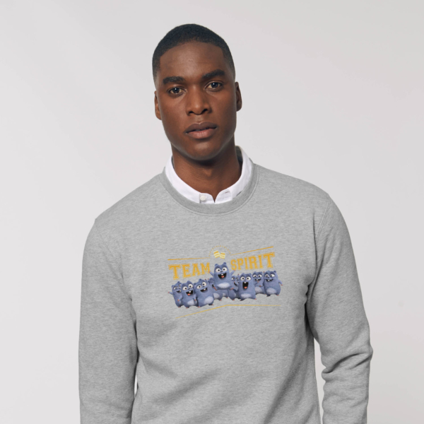 Sweat gris adulte team spirit grizzy et les lemmings homme